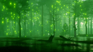 videoblocks-fairytale-woodland-scenery-with-mysterious-magic-firefly-lights-flying-over-creepy-forest-swamp-at-dark-misty-night-fantasy-